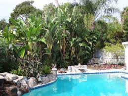 Beachside Gardens, LLC - Gallery Patio Ideas Small Tropical Container Garden Style Pool House Southern Living Backyard Design 1000 About Create A Oasis In Your With Outdoor Plants 1173 Best Etc Images On Pinterest Warm Landscaping 16 Backyard Designs The Cool Amenity For Tropicalbackyard Interior Vacation Landscapes Diy