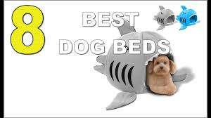 Top Rated Orthopedic Dog Beds by Top 8 Best Dog Beds 2017 Youtube