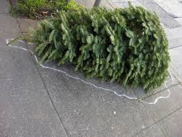 Harrows Artificial Christmas Trees by When To Take Your Christmas Tree Down And How To Get Rid Of It