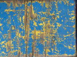 Old Wood Texture With Chipping Layers Of Blue And Yellow Paint Cracked Grey