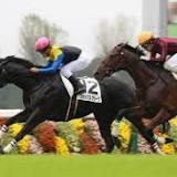 新馬, 川田 将雅, 京都市, 着差, 競馬の競走格付け, 競走馬の血統