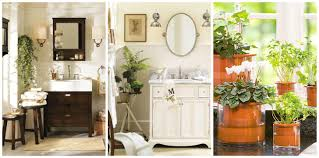 Best Plant For Your Bathroom by Unique Ideas For Bathroom Decorating Themes 87 For Your Home Decor