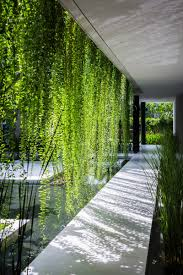 100 Images Of Hanging Gardens This Walkway Through Is Hot On Pinterest Today