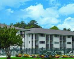 One Bedroom Apartments In Wilmington Nc by One Bedroom Apartments In Wilmington Nc Best Apartment In The