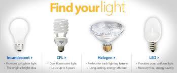 free energy saver light bulbs decoratingspecial