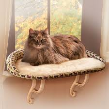 Cat Beds Petco by 94 Best Favourite Cat Products Images On Pinterest Cat Products