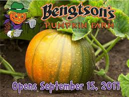 Bengtsons Pumpkin Patch Homer Glen Il by Bengston U0027s Pumpkin Farm Opening For The Season Homer Glen Il Patch