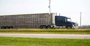 100 Livestock Trucking Legislation Introduced To Revise Livestock Trucking Regulations