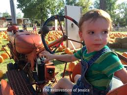Pumpkin Patch Houston Tx Area by 7 Acre Wood Pumpkin Patch The Reinvention Of Jessica