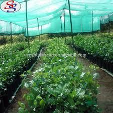Christmas Tree Baler Netting by Biodegradable Netting Biodegradable Netting Suppliers And