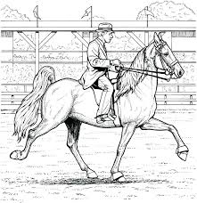 Full Image For Printable Horse Jumping Coloring Pages Adults Only Dressage Colouring