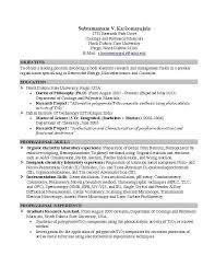 Internship Resume Template Inspirational It Objective