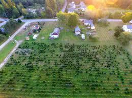 Christmas Tree Farm Near Lincoln Nh by Noel U0027s Tree Farm In Litchfield Nh New England Farmland Finder