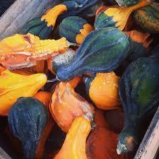 Gust Brothers Pumpkin Farm by 51 Best Pumpkin Farms Images On Pinterest Pumpkin Farm Pumpkins