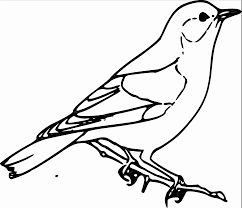 Sparrow clipart black and white Pencil and in color sparrow