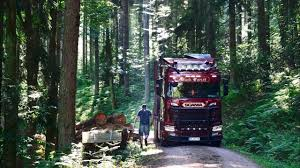 Timber Trucking In The Black Forest With Dennis | Driver's Day ... Duane Mclaughlin Transport Inc Home Facebook Injury By Truck A Look At The Oil And Gas Trucking Industry The Pearson Metal Art Artist Larry Trailer Knocks Down Part Of Ced Building On Union Avenue News Charles E Haley Grayson Shirley Farrell L Hunt Dba Lead Pedal Podcast With Bruce Outridge S Burlington Woman Seeks Safer Highways Keithhaleyandsons Hash Tags Deskgram Pending California Law Curbing Driver Abuses Might Perchance All Things Trucking Raai