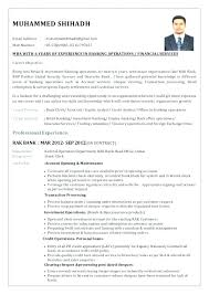Bank Executive Jobs Sample Resume Format For Experienced Banking Professional New Investment
