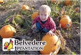 Free Pumpkin Patch In Fredericksburg Va by Pickin U0027 The Patch At Belvedere Plantation Fredericksburg Parent