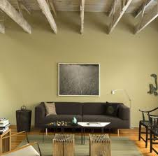 lime green paint living room transitional with skin shaped