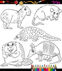 Coloring Book Or Page Cartoon Illustration Of Black And White Wild Animals Characters For Children Stock