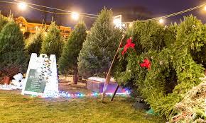 OLG Mens Club Christmas Tree Lot Our Lady Of Grace Catholic Church