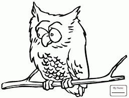 Coloring Pages Recent Birds Big Eyed Owl
