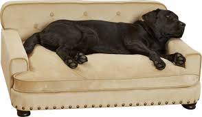Chewproof Dog Bed by Enchanted Home Pet Library Dog Sofa U0026 Reviews Wayfair