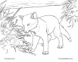 Forest Wildlife Art Coloring Book Page