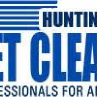 Par Rating Carpet by How To Clean Pet Stains From Carpet Naturally Carpet Nrtradiant