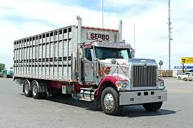 International Bobtail | Cattle Trucks - Something I've Done In The ... Why Bobtail Liability Coverage Is Important Genesee General 4500 Bobtail Blueline Westmor Industries Propane Trucks Lins Used Top 3 Questions On Bobtailnontrucking Mile Markers American Inc Dba Isuzu Of Rockwall Tx Hino Isuzu Truck Dealer 2 Dallas Fort Worth Locations Liquid Transport Trailers Vacuum Dragon Products Ltd The Need For Speed News China Dofeng 4x2 8t Mini Lpg Tank Insurance Barbee Jackson
