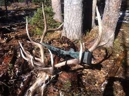 Shed Hunting Utah 2017 by Second Scouting Trip For 2013 Elk Hunt Shed Hunt Big Game Hunt