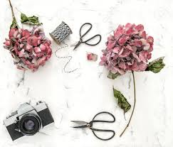 Flat Lay With Hortensia Flowers Vintage Scissors And Retro Photo Camera On White Marble Background