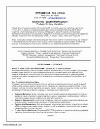Beautiful Resume Objective For Caregiver Position Associates Degree In Summary Statement Examples Of 19 Awesome