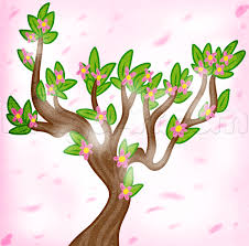 how to draw a spring tree