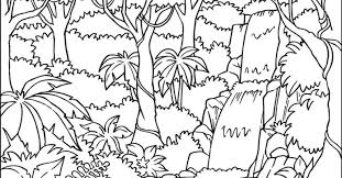 Rain Forest Coloring Pages Printable