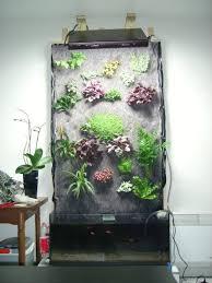 aquarium dans le mur fabrication mur végétal 1ère création le d olivetzou