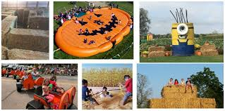 Pumpkin Patch Indiana County Pa by Roberts Farms Hay Maze Corn Maze Pumpkin Patch Home Facebook
