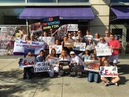am駭agement de bureau professionnel protesters call on fedex to ban shark fin shipments
