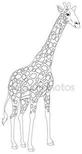 Animal Outline For Giraffe Stock Vector