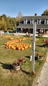 Pumpkin Picking Maine by County Fair Farm