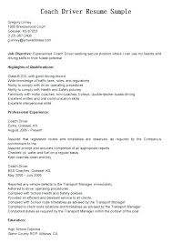 Resume Qualification Examples Of Abilities For Skills And List Organizational