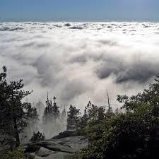 best 25 visalia california ideas on pinterest sequoia forest