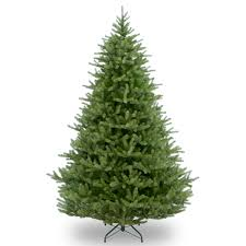 Dunhill Christmas Trees by Pre Lit Dunhill Fir Artificial Christmas Tree Christmas Lights