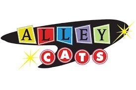 alley cats arlington pr relations firms fort worth arlington tx
