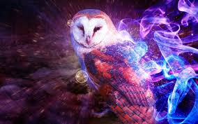 Cool Owl Wallpapers Group (72+) Barn Owl United Kingdom Eurasian Eagleowl Wallpaper Studio 10 Tens Of Barn Owl Wallpapers And Backgrounds Pictures 72 Images By Faezza On Deviantart Bird Falconry One Animal Closeup Free Image Snowy Hd 78 Sits Pole Wooden Dove Birds Images Hd 169 High Wallpaper 1680x1050 11554 Free Backgrounds At Wildlife Monodomo 2 One Online 4k Desktop For Ultra Tv Wide