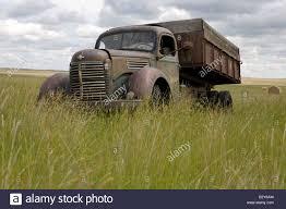 Old Grain Truck In Wheat Field Stock Photo: 19038961 - Alamy Maz Grain Trucks For Sale From Ukraine Buy Truck Au13840 1972 Ford 750 Ta Grain Truck Youtube Frank Mcinenly Auctionsandruckow Farms Ltd Kamaz 6520 Fm14104 Private Treaty Intertional Loadstar Grain Truck V12 Fs17 Farming Simulator 17 Old Chevy Vintage Pinterest Gmc Loading Image Photo Bigstock Intertional 4700 Truck19946 Stewart Farms Mi Cart To Stock 152437540 Alamy 1979 7000 Rich Hill Beds