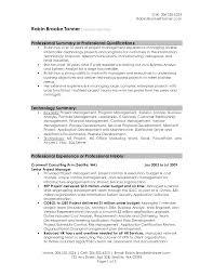 Resume Professional Summary Example