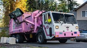 The Pink Garbage Truck