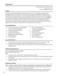 Professional Profile Resume Examples Pdf And