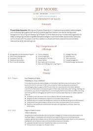 Sales CV Examples And Template